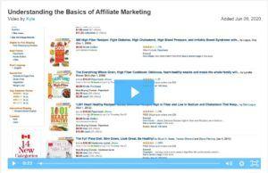 screenshot viseo, understanding the basics of Affiliate Marketing